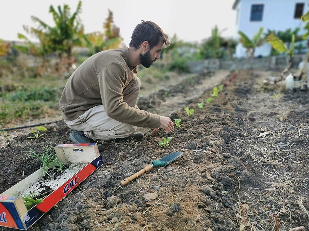 ecologic-garden-gran-canaria
